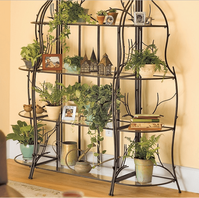 indoor plant stands